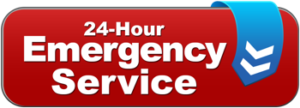 Snow Plowing Emergency - Macomb & Oakland County, MI